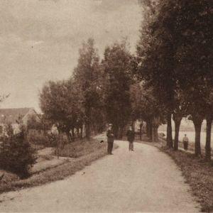 Gnephoek 1920