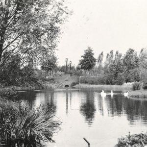 Vijver Bospark